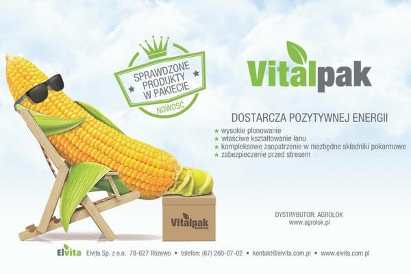Nawożenie dolistne wzmacnia kukurydzę