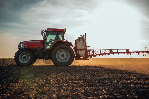 Kiedy zastosować herbicydy w uprawie rzepaku?