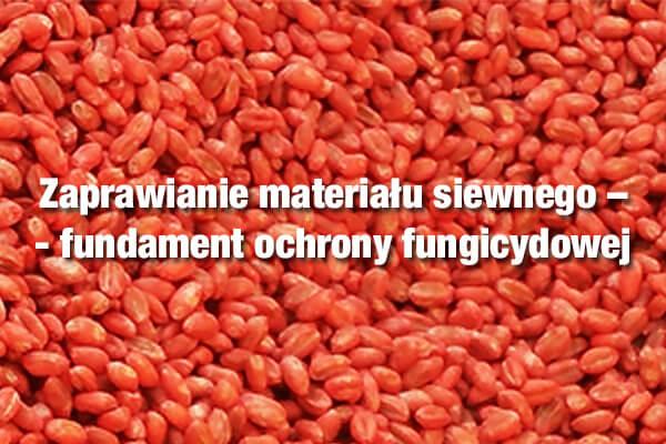 Zaprawianie materiału siewnego – fundament ochrony fungicydowej