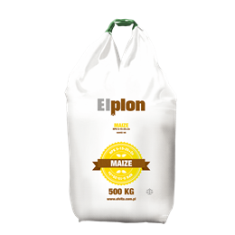 Elplon Maize