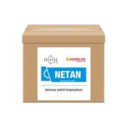 Areapak Netan (T1+T2)